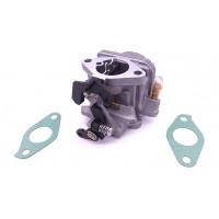 5041107 / 5040959 Carburador Johnson Evinrude 4 y 6HP 4 Tiempos