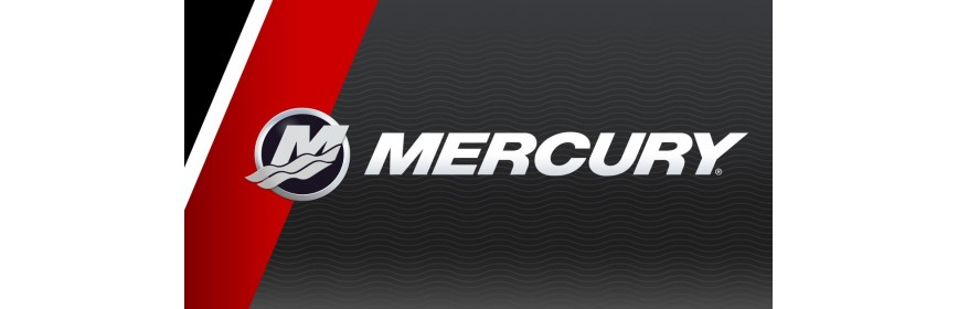 Motor trim Mercury